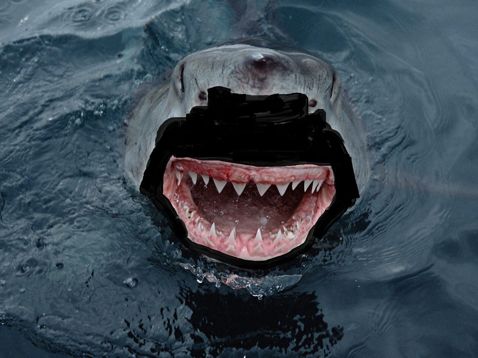 Great Black Shark The Zimmerman(n) Telegram